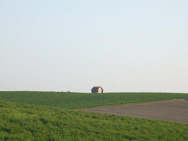 P1030359